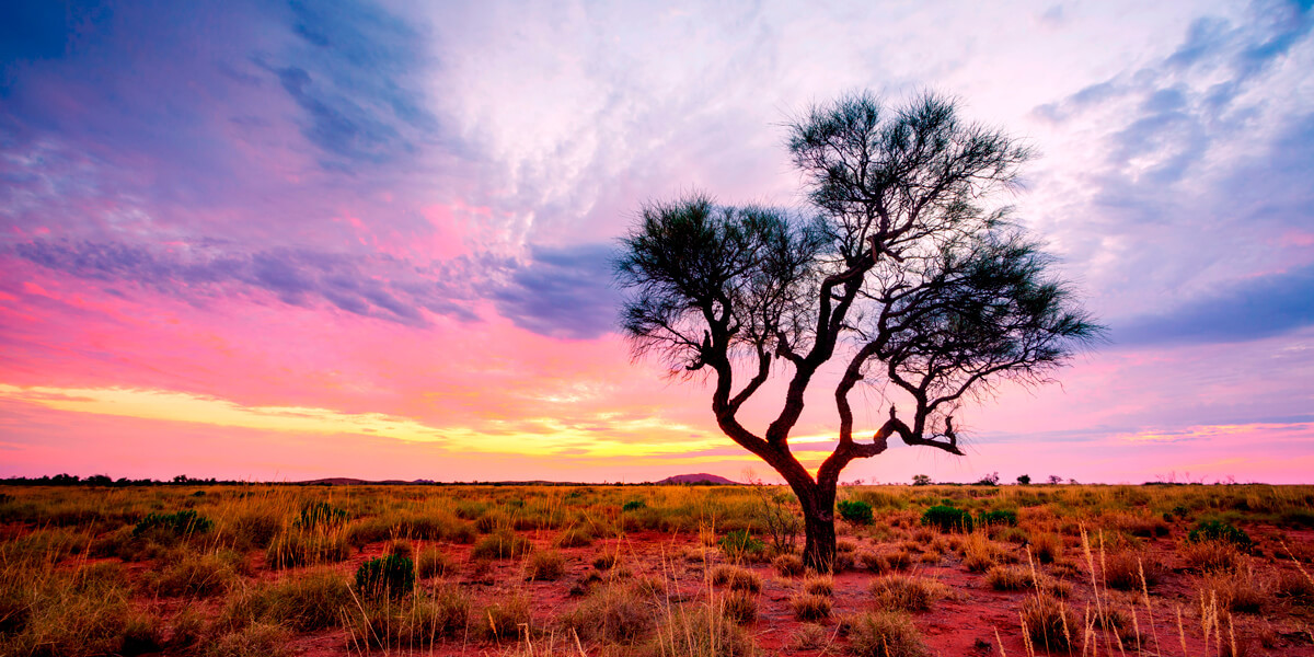 Gap Year Outback Shutterstock 1027890919 1200X600